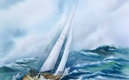 Sailing the Bay <br> 16 x 20